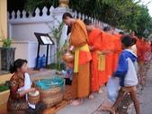 2010 Laos1寮國--龍坡邦:IMG_7499.JPG