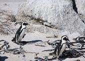 南非之旅:IMG_1976.JPG