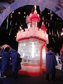 2014 CHILL 冰雕展:DSC00171.jpg