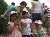 苗栗苑裡山水有機農場一日農夫體驗營 :IMG_7750.JPG
