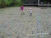 苗栗苑裡山水有機農場一日農夫體驗營 :IMG_7771.JPG