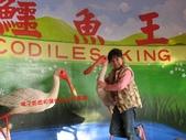 台南鱷魚王:IMG_1317.JPG