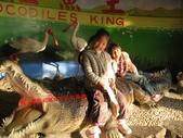 台南鱷魚王:IMG_1322.JPG