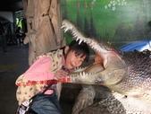 台南鱷魚王:IMG_1327.JPG