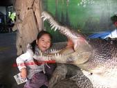 台南鱷魚王:IMG_1328.JPG