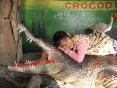 台南鱷魚王:IMG_1329.JPG
