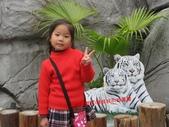 高雄壽山動物園:IMG_2010.JPG