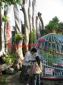 台南鱷魚王:IMG_1243.JPG