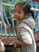 台南鱷魚王:IMG_1244.JPG