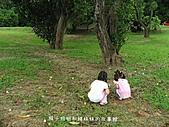台中之旅:IMG_2117.JPG