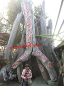 台南鱷魚王:IMG_1279.JPG