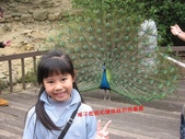 高雄壽山動物園:IMG_2030.JPG
