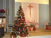 2009聖誕:聖恩堂2009年的聖誕樹001