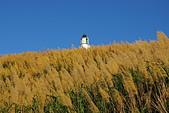 聖恩堂2008年暑期旅遊-馬祖東莒島:二級古蹟東犬燈塔005-遠眺燈塔.JPG