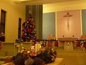 2009聖誕:聖恩堂2009年的聖誕樹002