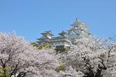 日本旅遊選集:春滿姬路城