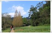福山植物園:IMG_1302.JPG