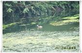 福山植物園:IMG_1295.JPG