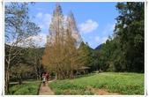 福山植物園:IMG_1307.JPG
