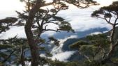 北大武山:DSC03872.JPG