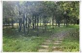 福山植物園:IMG_1470.JPG