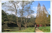 福山植物園:IMG_1305.JPG