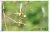 福山植物園:IMG_1293.JPG