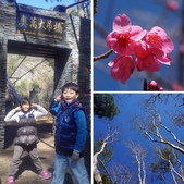 2015.01.24奧萬大森林公園:相簿封面