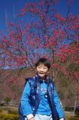 2015.01.24奧萬大森林公園:DSC00338_調整大小.JPG