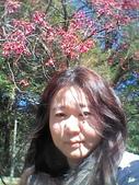 2015.01.24奧萬大森林公園:披頭散髮