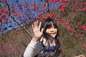 2015.01.24奧萬大森林公園:DSC00339_調整大小.JPG