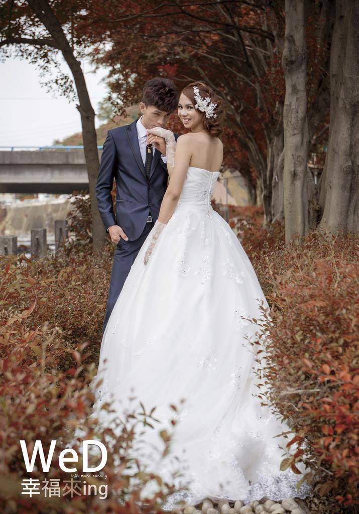 新竹婚攝,鶯哥婚攝