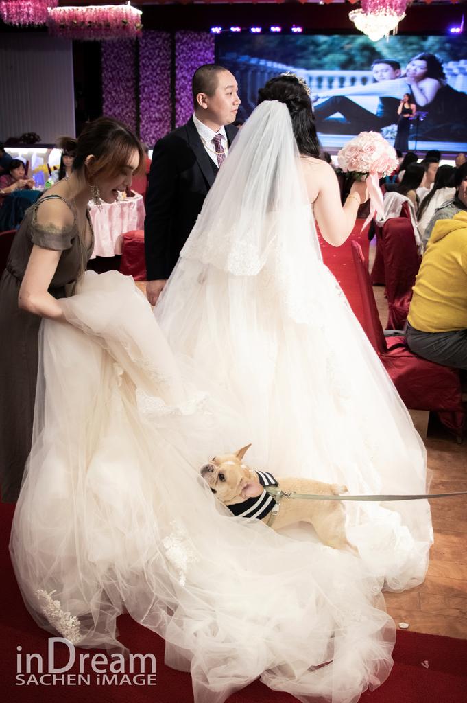 台北婚攝,法鬥,法鬥婚紗