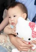親子抓週全家福寫真 - 小海豚、小龜:011.jpg
