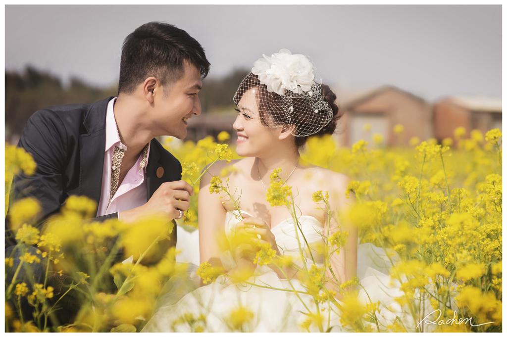 高美溼地,亞洲大學婚紗