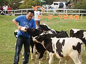綜藝大集合嘉義中埔:嘉義中埔_11喝奶奶之餵牛一.jpg