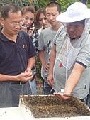 7/11桃園大溪鮮筍蜂蜜大集合:DSC07980.JPG