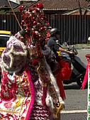 戊子(97)年三重武賢宮恭祝中壇元帥聖誕千秋暨二十週年慶:CIMG7535.JPG