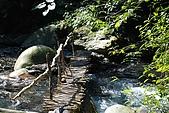 蘭陽地區:DSC_2731K九寮溪步道.jpg