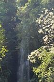 蘭陽地區:DSC_2744K九寮溪瀑布.jpg