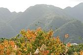 蘭陽地區:DSC_2665CK員山二湖.jpg