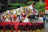 台北地區:DSC_3436CK.jpg