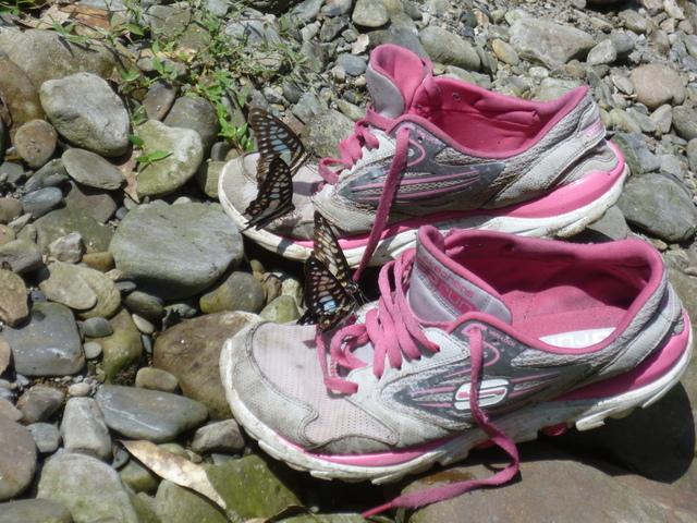 蝴蝶愛媽媽鞋 - 真正的露營
