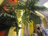 姪女文定-福宴國際美食餐廳:IMG_1118.JPG