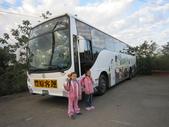 2012-12-16新社花海節:IMG_6813.JPG