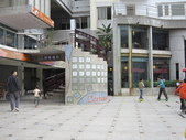 2013-1-6東海藝術街及秋紅谷:IMG_7585.JPG