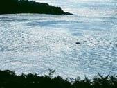 風景:1408215008.jpg