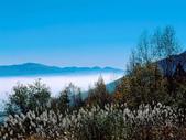 風景:1408215001.jpg