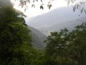 20130302_水漾森林:IMGP0006.JPG