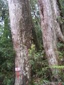 20130302_水漾森林:IMGP0016.JPG